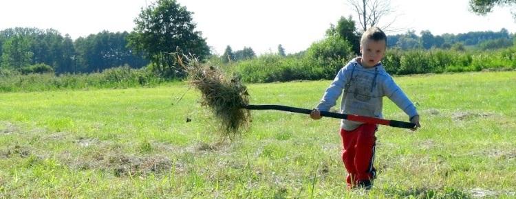 stawiokolice pomoc w gospodarstwie